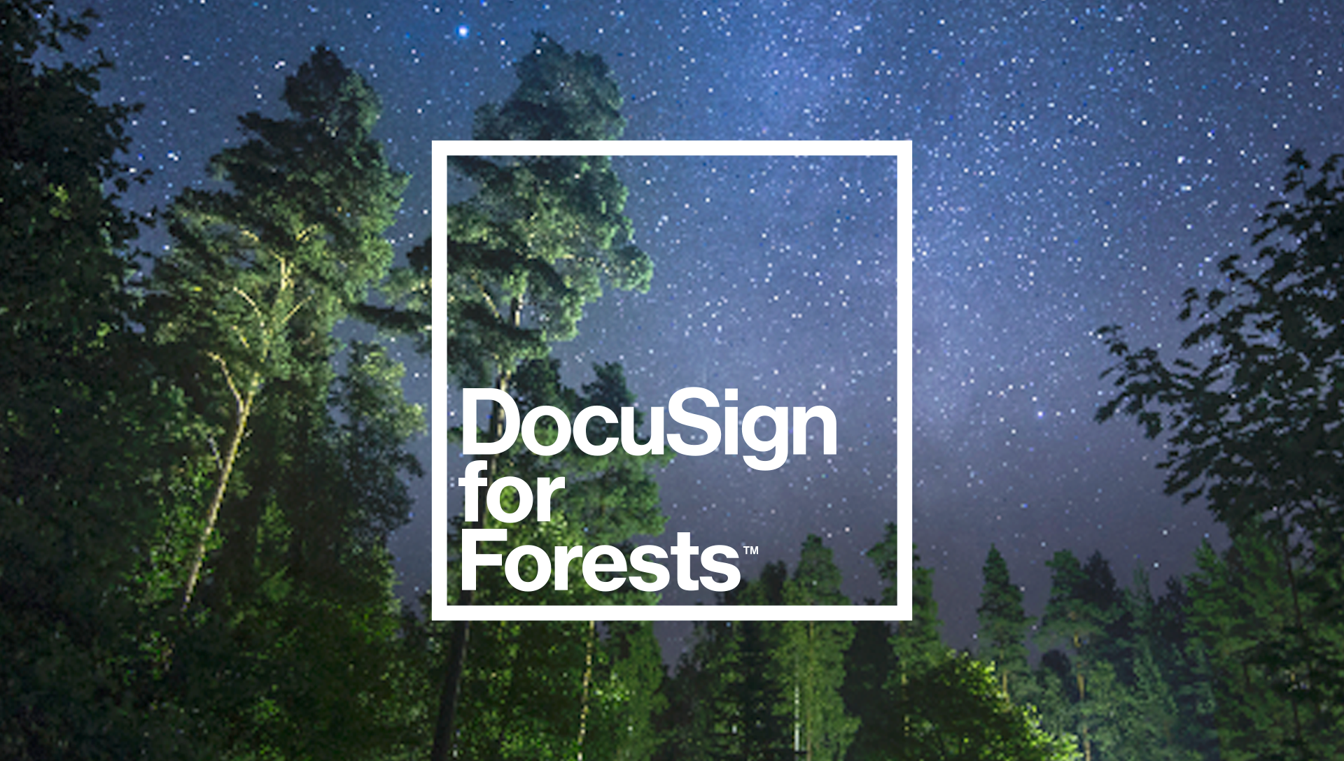 DocuSign for Forests still image